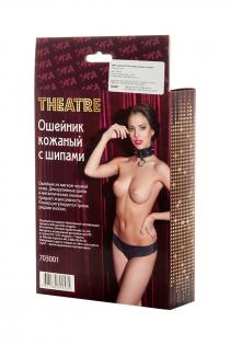ОшейникTOYFA Theatre кожаный с шипами
