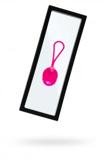 Рамка для выкладки прозрачная с черным кантом под подставку 23*9