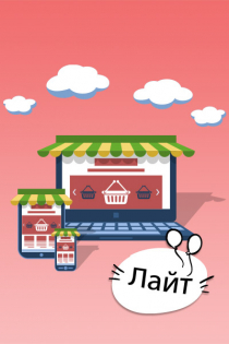 Интернет-магазин «Лайт»: 12 месяцев