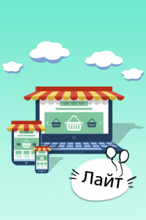 Интернет-магазин «Лайт»: 6 месяцев